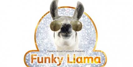 Funky Llama Job Advert.jpg