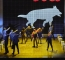 The Curious Incident of the Dog in the Night-Time 2.jpg