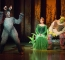 Shrek the Musical 2015 (31).jpg