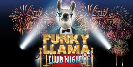 Funky Llama Club Night 2017.jpg