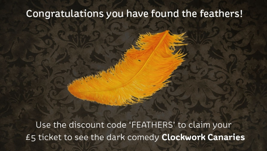 find the feathers web image.jpg