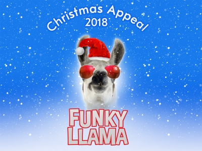 Funky Llama Christmas Appeal 2018 Donate Your Own