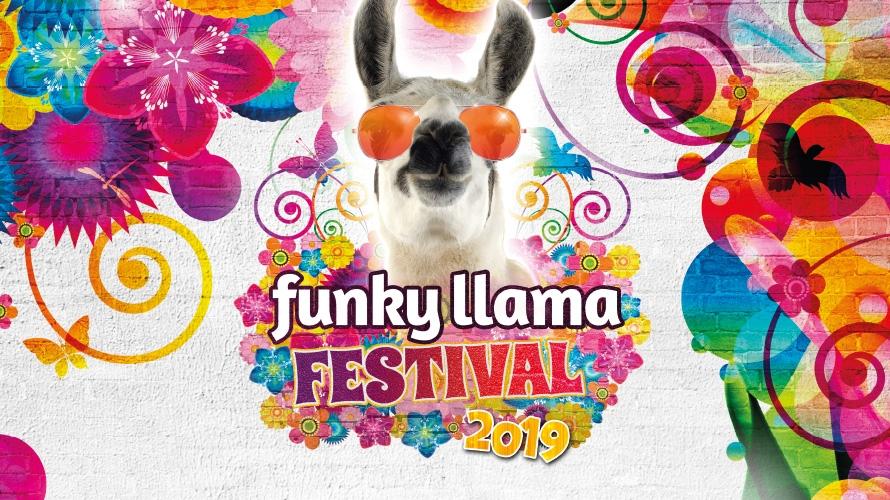 Funky Llama Festival Plymouth Hoe June 2019