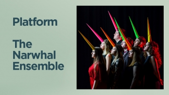 Platform: The Narwhal Ensemble